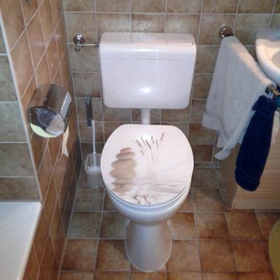 Badsanierung - altes WC